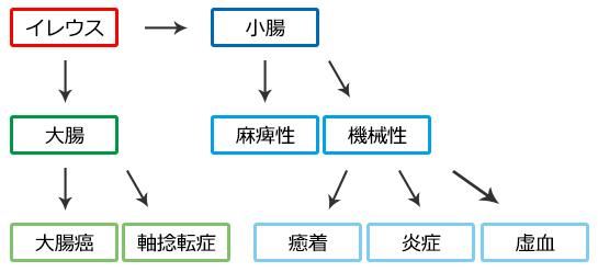 イレウス(腸閉塞)分類・大腸と小腸